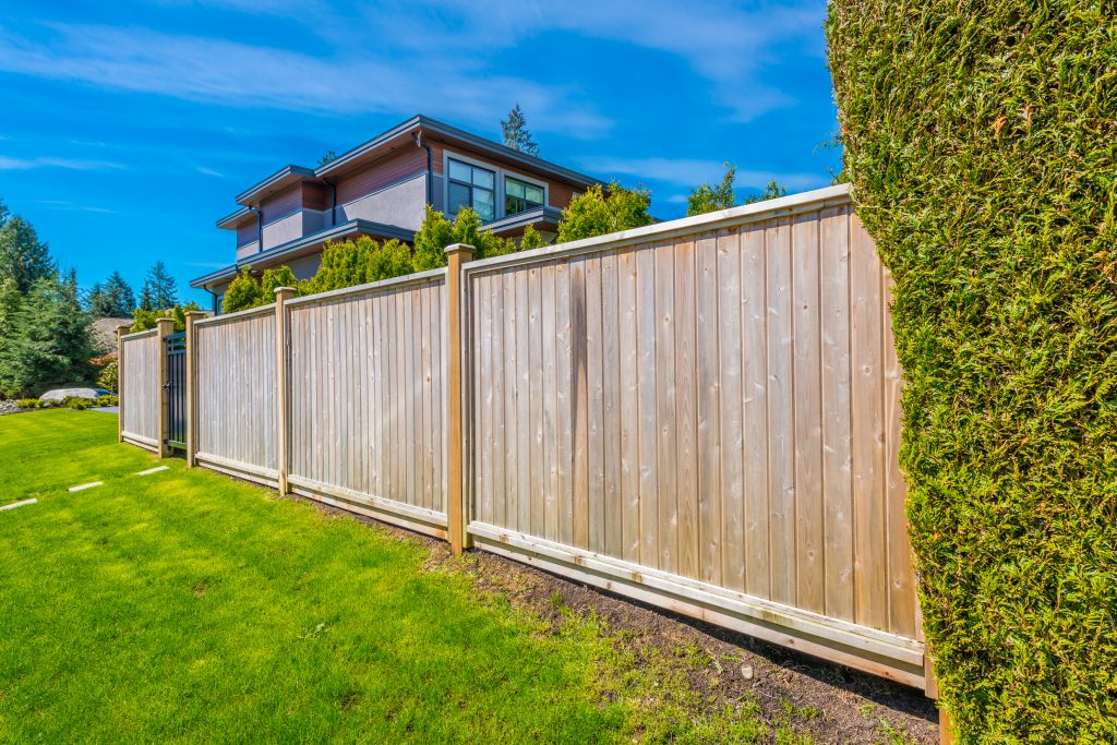 wood fence and green grass